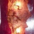 Lamp paars paneeltje glasmat
